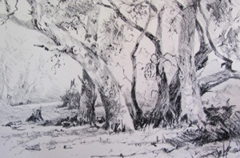 silverton-reds-charcoal-on-rough-paper-julie-simmons-300x1981