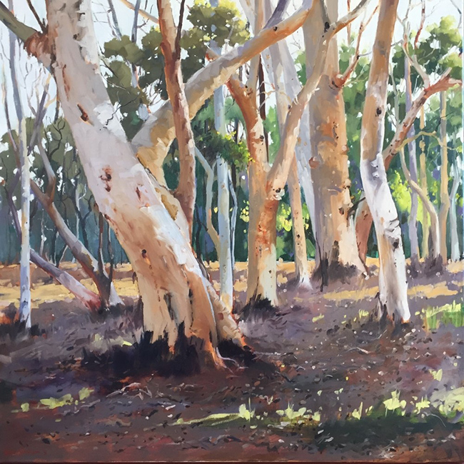 17 My Local Bushland Here and There Exhib Julie Simmons