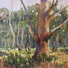 27 Scribbly Gums Here and There Exhib Julie Simmons