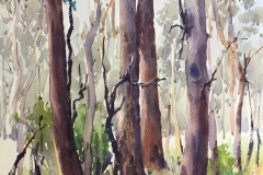 16 Burralow Trees Here and There Exhib Julie Simmons