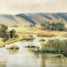 Castlereagh-Wetlands-watercolour-julie-simmons