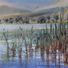 bullrushes-watercolour-plein-air-piece-julie-simmons